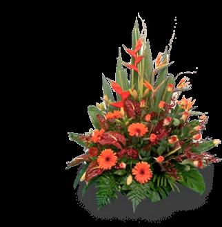 Birthday Flowers Altona